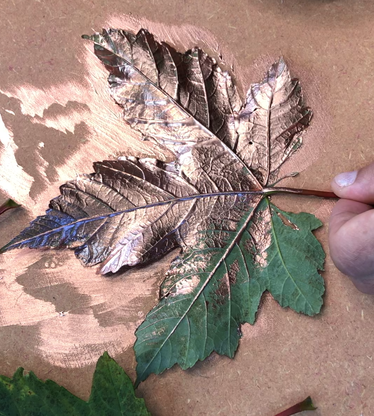 The back side of a leaf half painted in Posh Chalk Pigments.